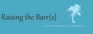 Raising the Barrs