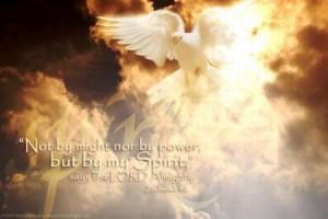 spirit-dove