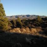 Peeple's Valley