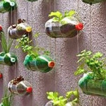 Repurposed liter bottles for plants